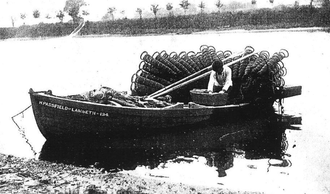 A1 eel fishing Chiswick 1898 (2)