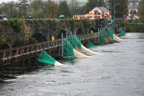 D8 Shannon eel fishery nets