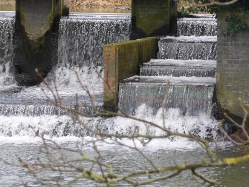 Langford Weir 008